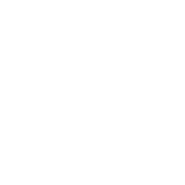 The Little Leather Factory